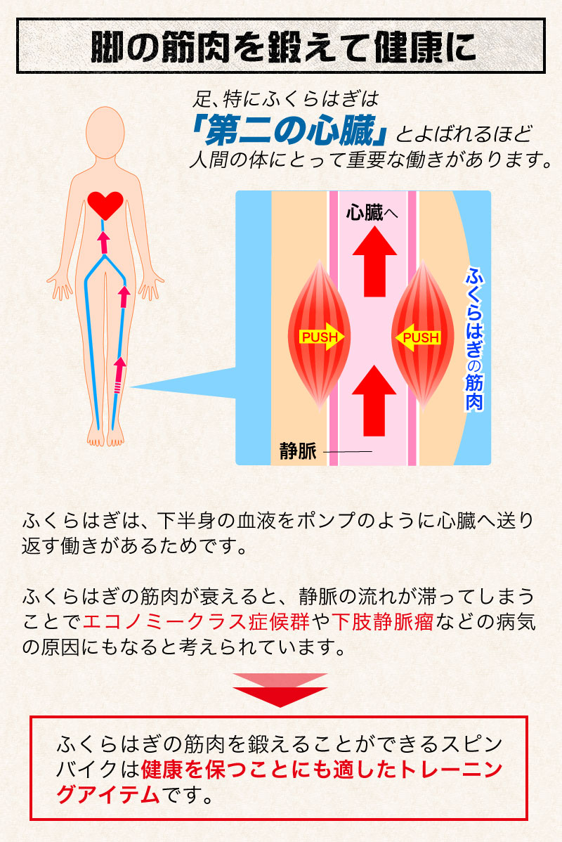 脚の筋肉を鍛えて健康に