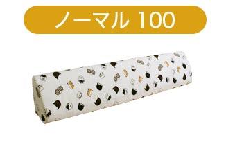 種類 ノーマル100